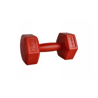 RING SPORT Тежести HEXAGON DUMBBELL 1X2 KG